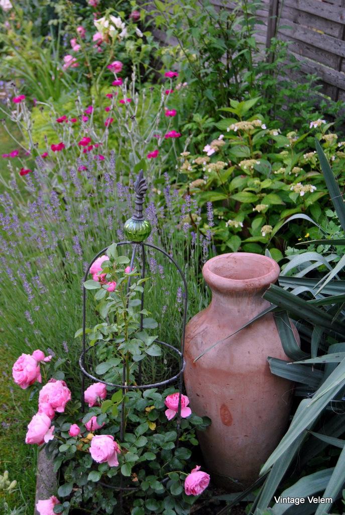 08-virágokkal körülölelve...