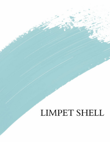27-Lignocolor Old Shabby Chic Limpet Shell