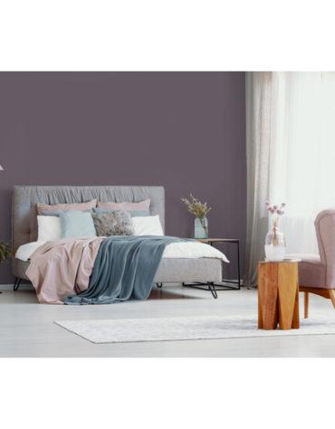 produkte-wandfarben-wandfarbe-plum-2-5-l_3