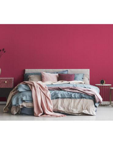 produkte-wandfarben-wandfarbe-raspberry-2-5-l_3