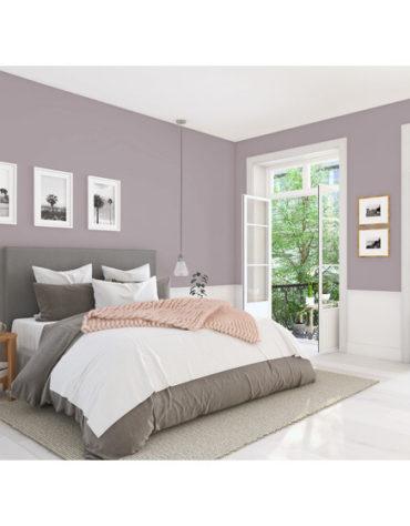 produkte-wandfarben-wandfarbe-valencia-2-5-l_3